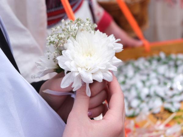 Краевая акция «Белый цветок»
