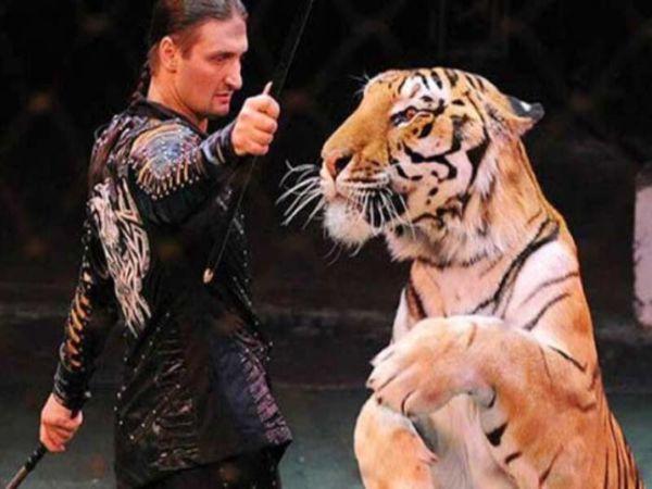 Эдгард Запашный приглашает зрителей на гала-концерт Всероссийского фестиваля циркового искусства